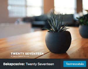 Twenty Seventeen theme + WP 4.7